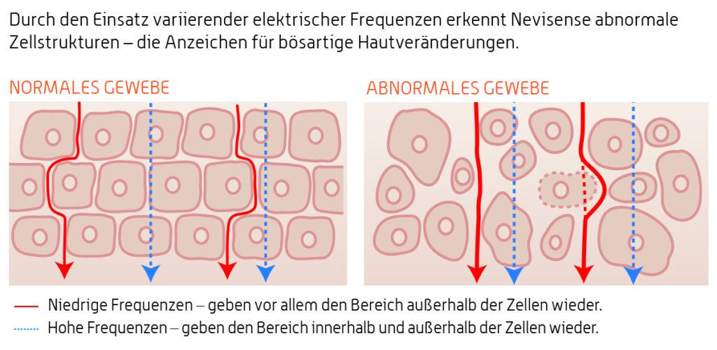 Prinzip Impedanzspektroskopie in Haut